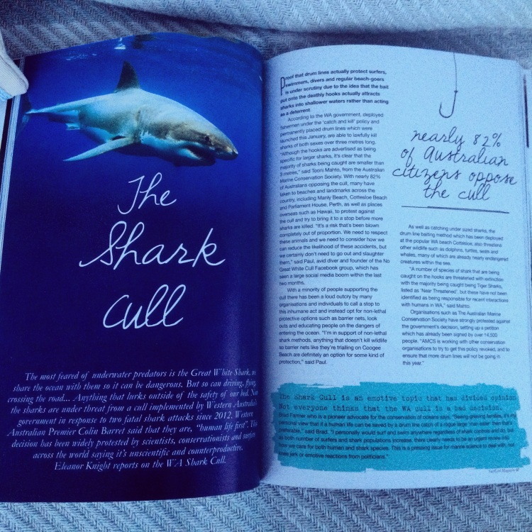 The published article- April 2014 (SurfGirl Magazine)